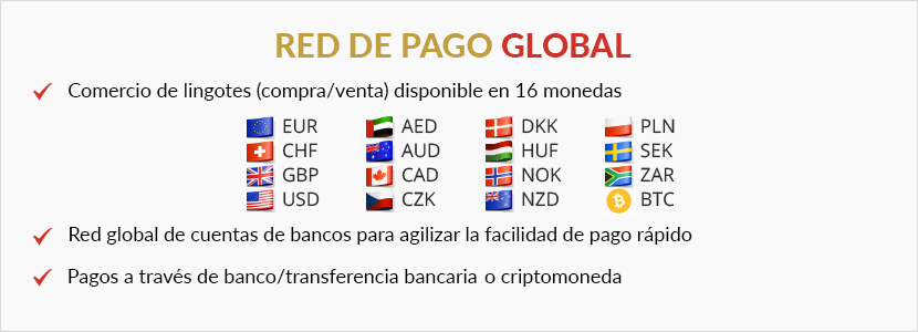 Global Payment Network Spanish.png