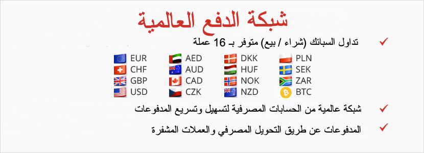 global-payment-network-arabic.png